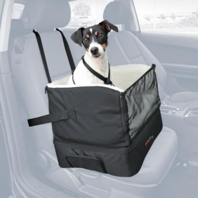 отправляемся в путешествие с собакой